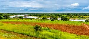 04 20170202-am Zambezi-DSC 5818